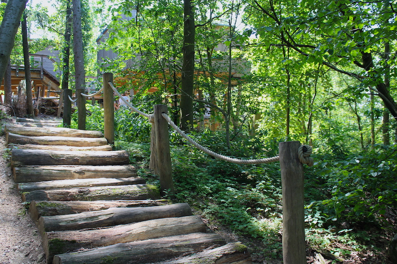 Die Wege im Panarbora werden überwiegend aus Naturmaterialien gestaltet.